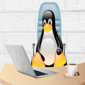 Useful Bash Scripts for Linux System Administrator